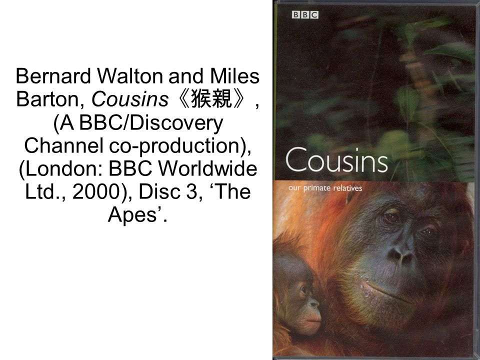 18 Bernard Walton and Miles Barton, Cousins 《猴親》, (A BBC/Discovery Channel co-production), (London: BBC Worldwide Ltd., 2000), Disc 3, 'The Apes'.