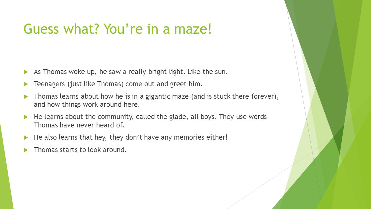 Guess what? You're in a maze!  As Thomas woke up, he saw a really bright light. Like the sun.  Teenagers (just like Thomas) come out and greet him.