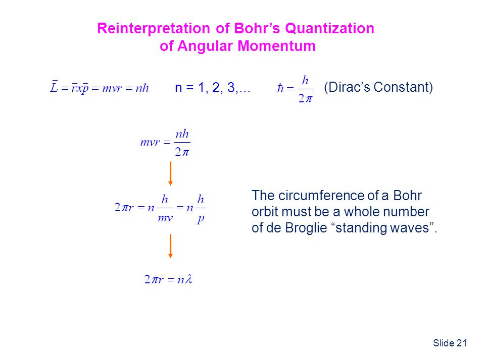 Slide 21 Reinterpretation of Bohr's Quantization of Angular Momentum n = 1, 2, 3,... (Dirac's Constant) The circumference of a Bohr orbit must be a wh