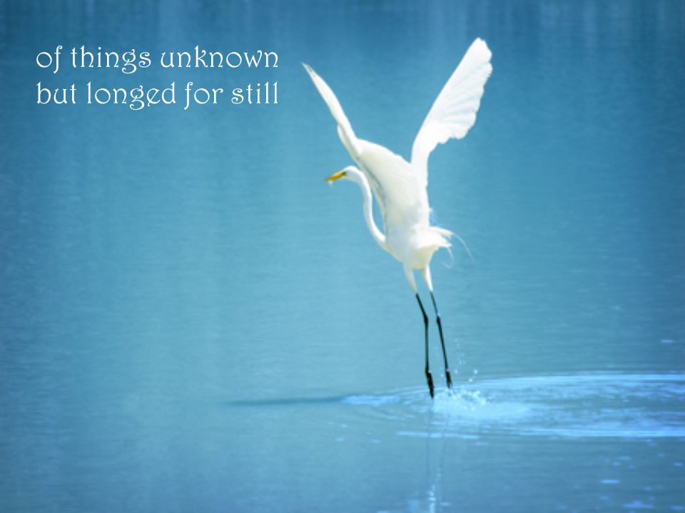 of things unknown but longed for still