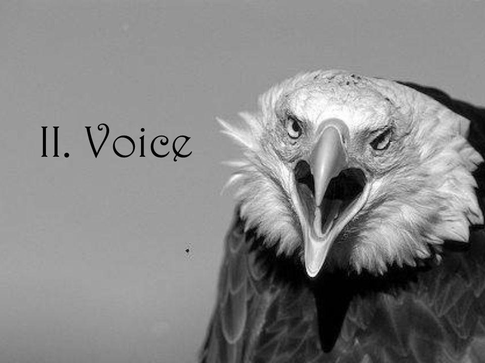 II. Voice