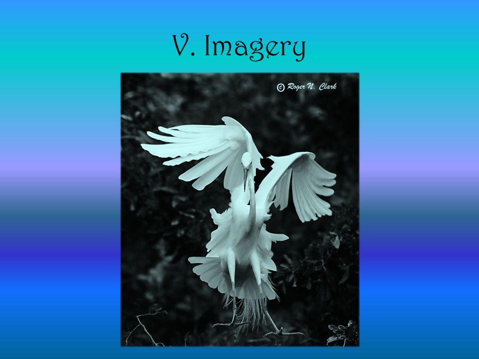 V. Imagery