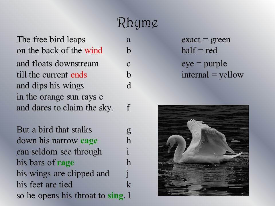 Rhyme The free bird leaps aexact = green on the back of the wind bhalf = red and floats downstream ceye = purple till the current ends binternal = yel