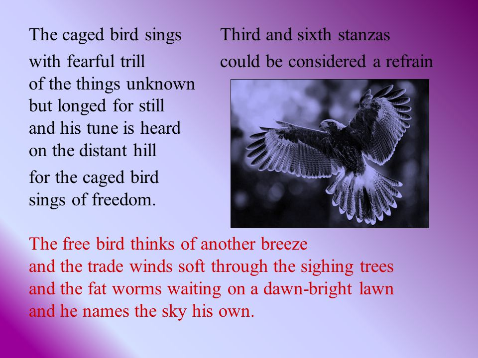 The caged bird sings Third and sixth stanzas with fearful trill could be considered a refrain of the things unknown but longed for still and his tune