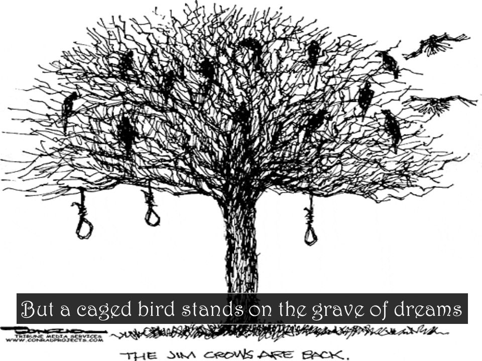 But a caged bird stands on the grave of dreams