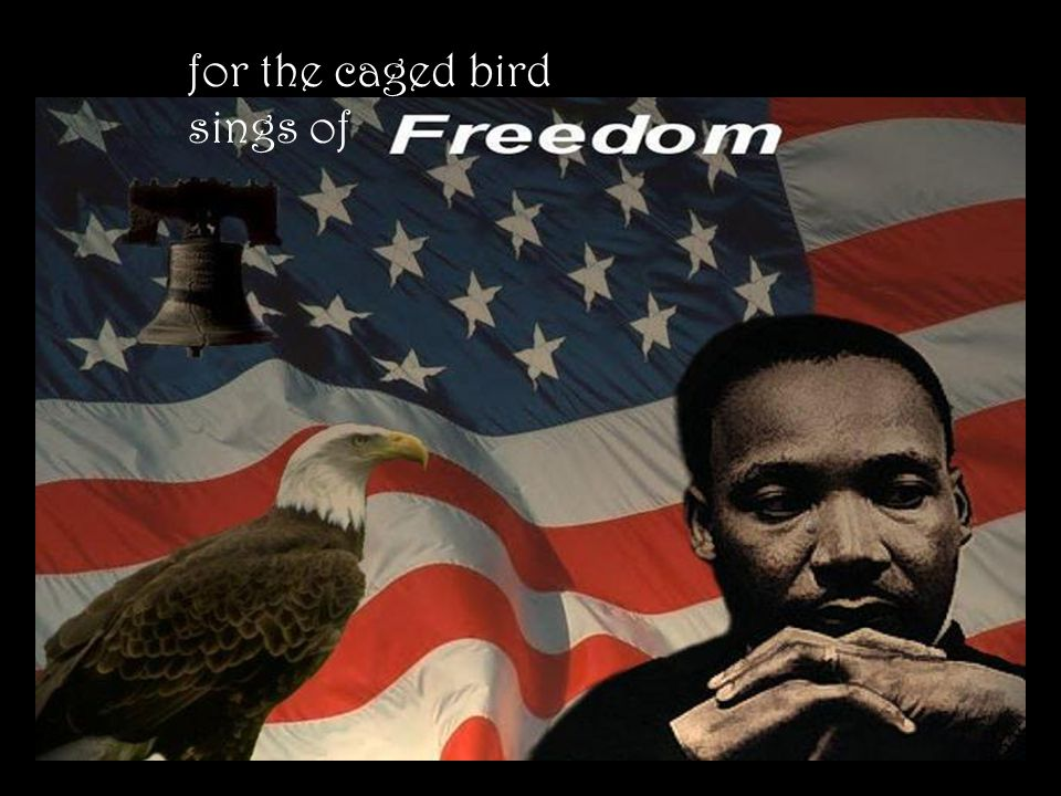 for the caged bird sings of