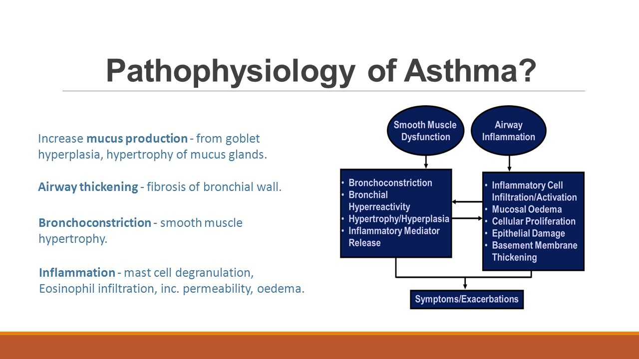Long term management of asthma Step 1: short acting beta 2 agonist (salbutamol) Step 2: Add low dose inhaled corticosteroid Step 3: Add long acting beta 2 agonist Step 4: Increase to high dose inhaled corticosteroids Step 5: Add on therapies including oral corticosteroids