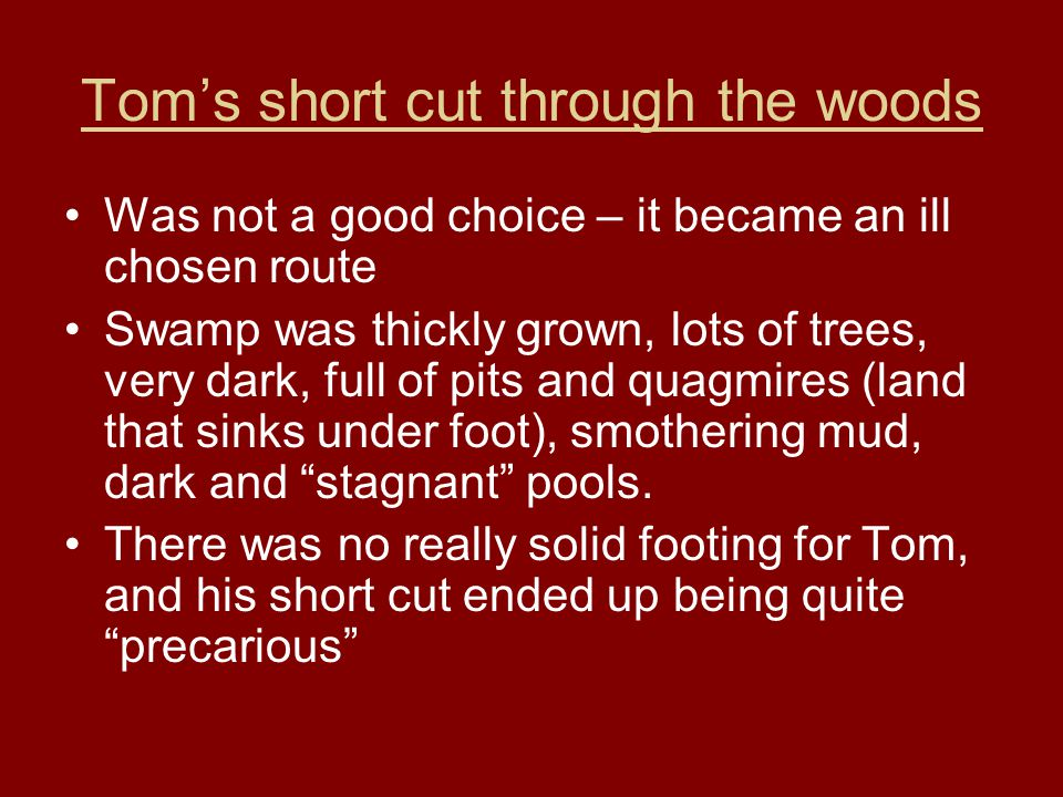 Tom's short cut through the woods Was not a good choice – it became an ill chosen route Swamp was thickly grown, lots of trees, very dark, full of pit