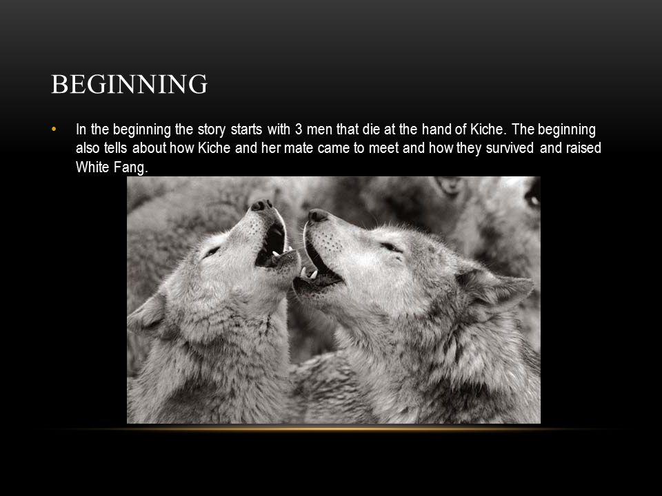 BEGINNING In the beginning the story starts with 3 men that die at the hand of Kiche.