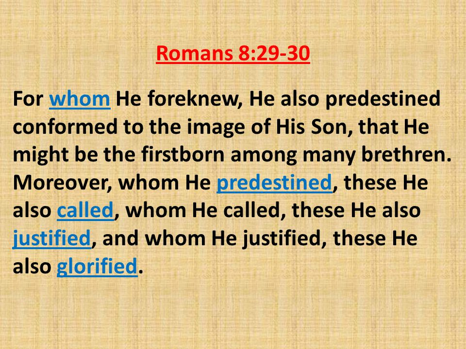 Romans 8:29-30 For whom He foreknew, He also predestined conformed to the image of His Son, that He might be the firstborn among many brethren.