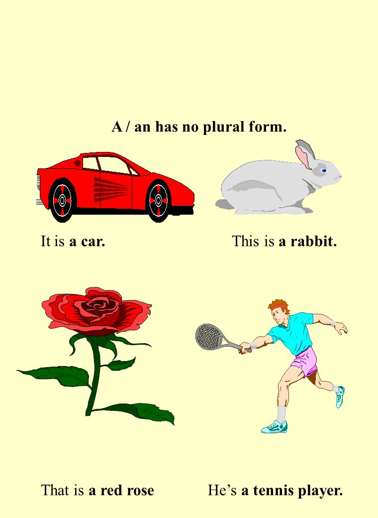 A / an has no plural form. It is a car. This is a rabbit. That is a red rose He's a tennis player.