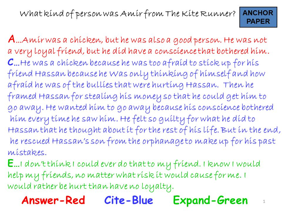1 What kind of person was Amir from The Kite Runner? A … Amir was a chicken, but he was also a good person. He was not a very loyal friend, but he did