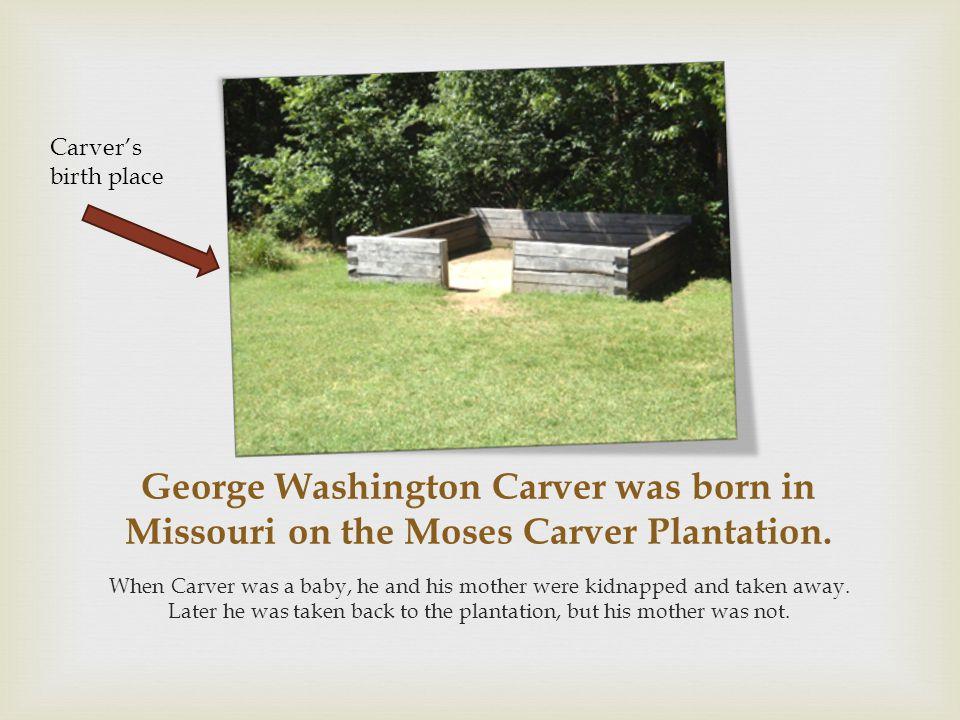 George Washington Carver was born in Missouri on the Moses Carver Plantation.
