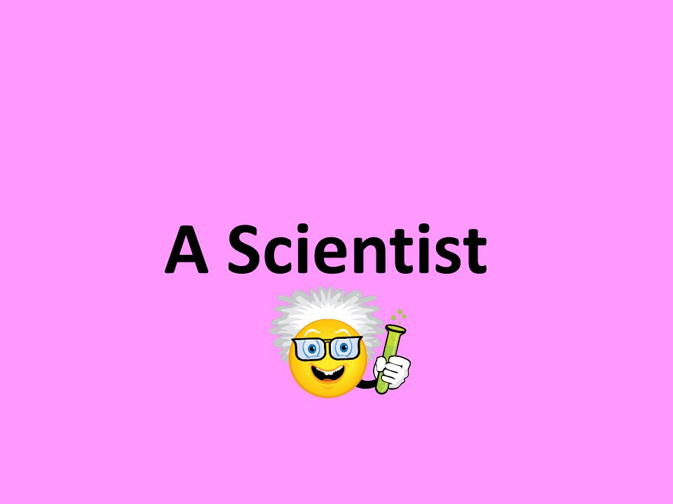 Scientists work in many places. They study many different things.