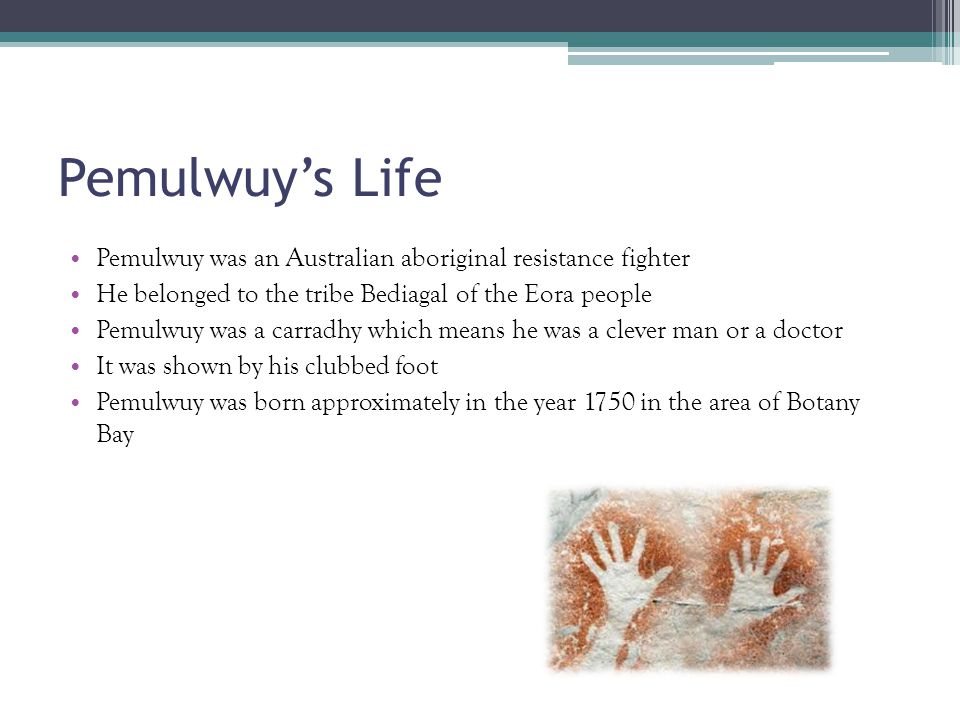 Pemulwuy's Life P emulwuy was an Australian aboriginal resistance fighter H e belonged to the tribe Bediagal of the Eora people P emulwuy was a carradhy which means he was a clever man or a doctor I t was shown by his clubbed foot P emulwuy was born approximately in the year 1750 in the area of Botany Bay
