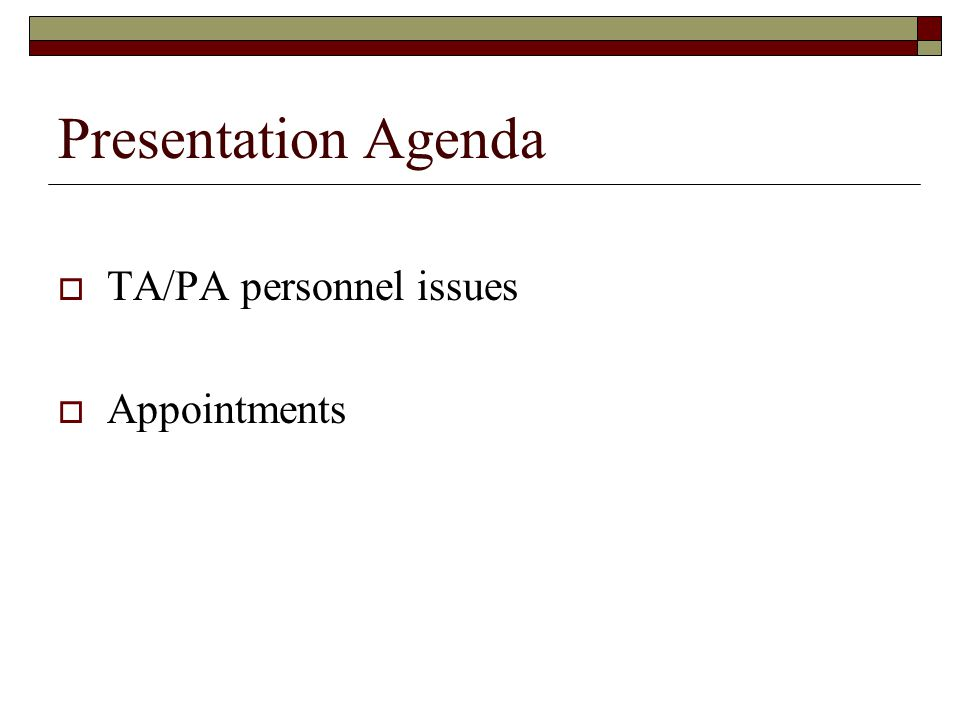Presentation Agenda  TA/PA personnel issues  Appointments