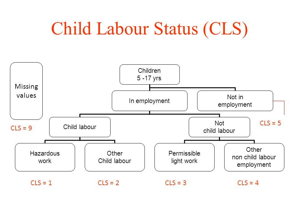 Child Labour Status (CLS) Children 5 -17 yrs In employment Not in employment Child labour Not child labour Hazardous work Other Child labour Permissib