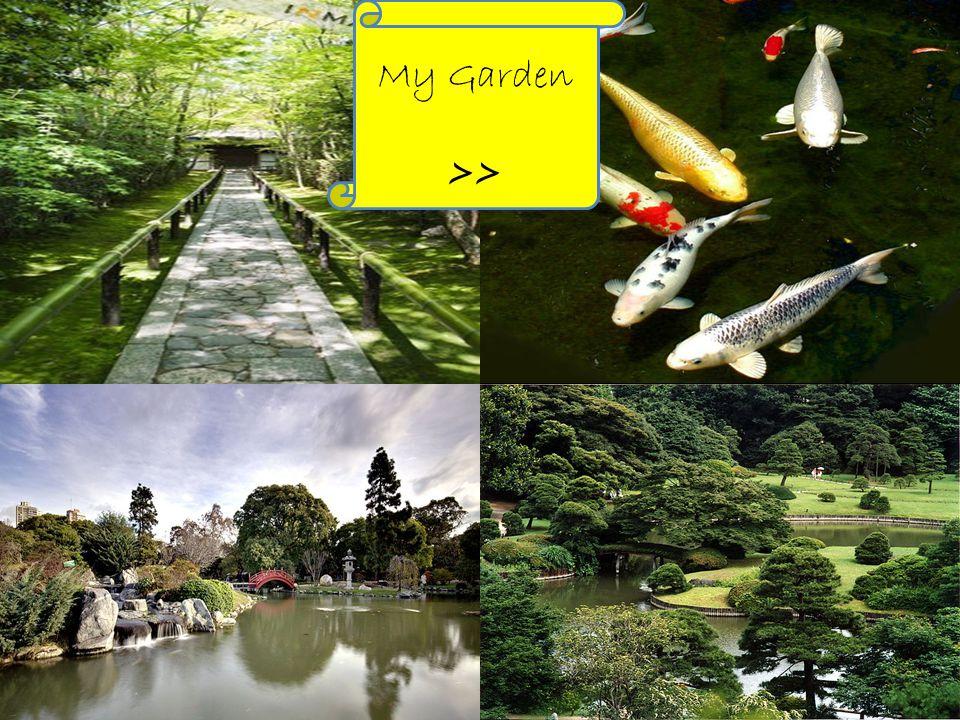 My Garden >>