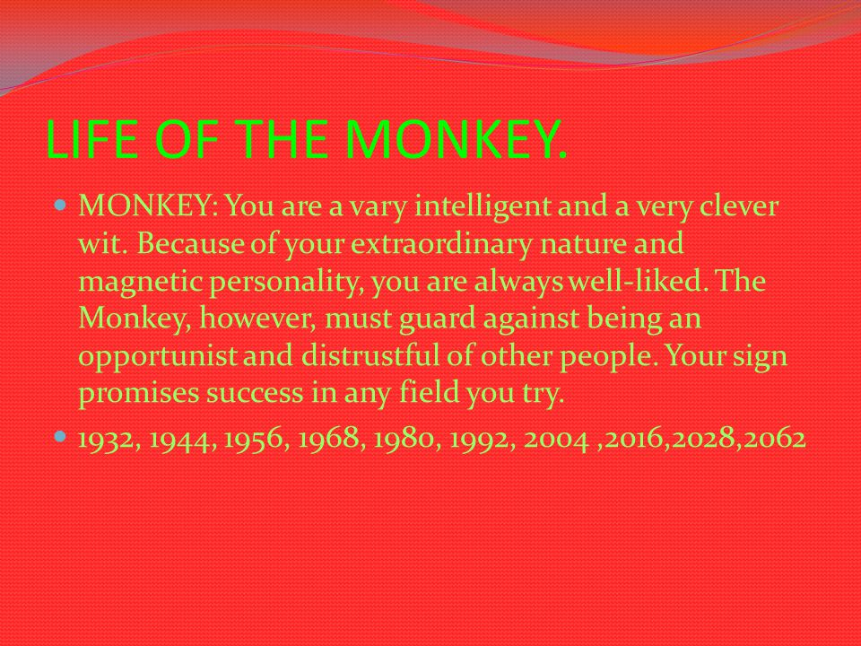 LIFE OF THE MONKEY. MONKEY: You are a vary intelligent and a very clever wit. Because of your extraordinary nature and magnetic personality, you are a