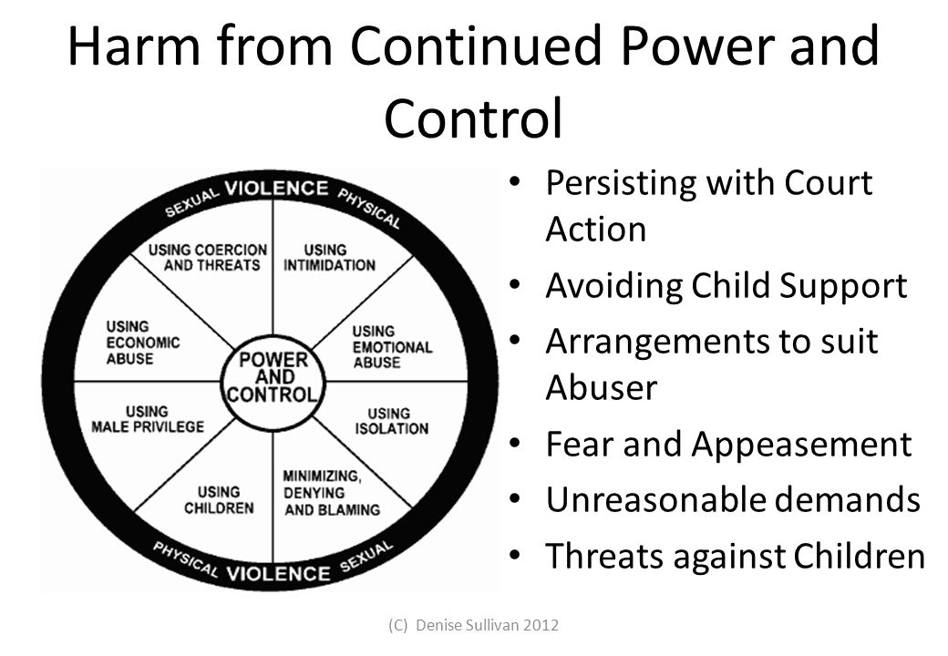 Harm from Continued Power and Control Persisting with Court Action Avoiding Child Support Arrangements to suit Abuser Fear and Appeasement Unreasonabl