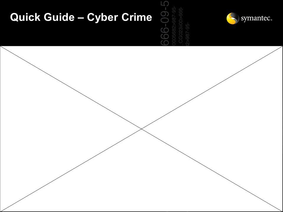 Quick Guide – Cyber Crime