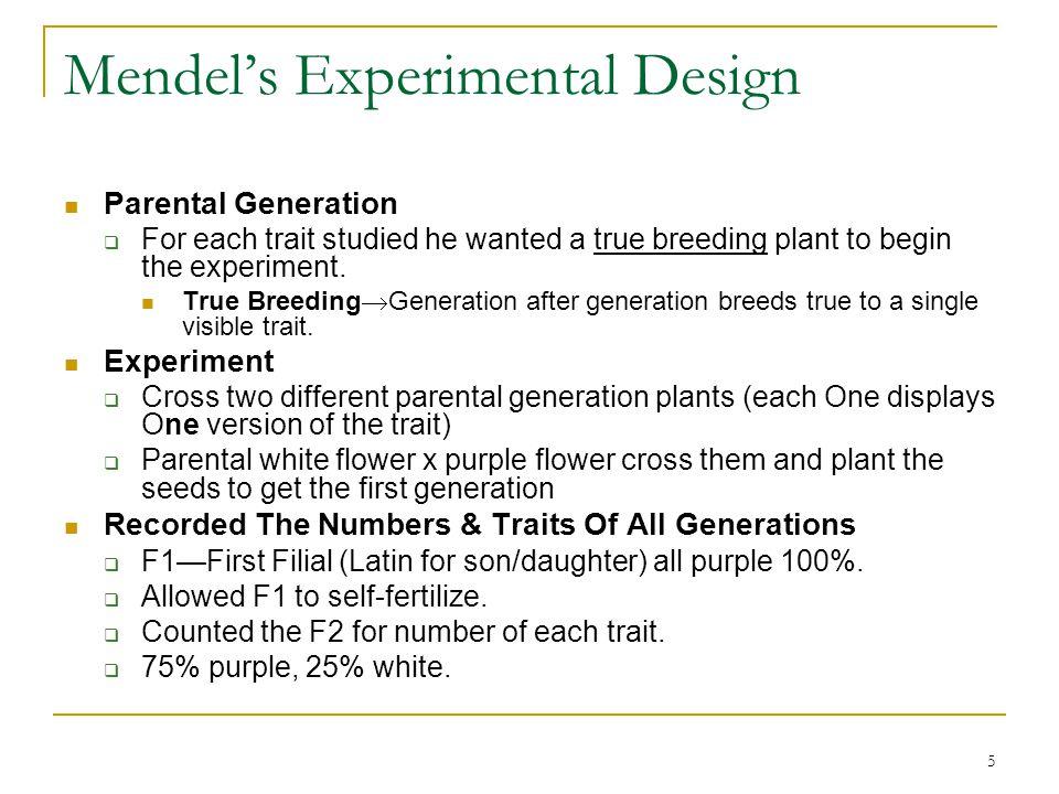5 Mendel's Experimental Design Parental Generation  For each trait studied he wanted a true breeding plant to begin the experiment. True Breeding  G