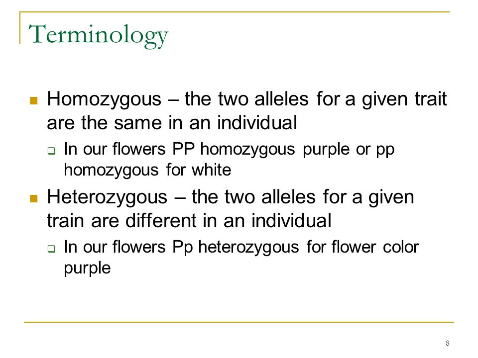 8 Terminology Homozygous – the two alleles for a given trait are the same in an individual  In our flowers PP homozygous purple or pp homozygous for