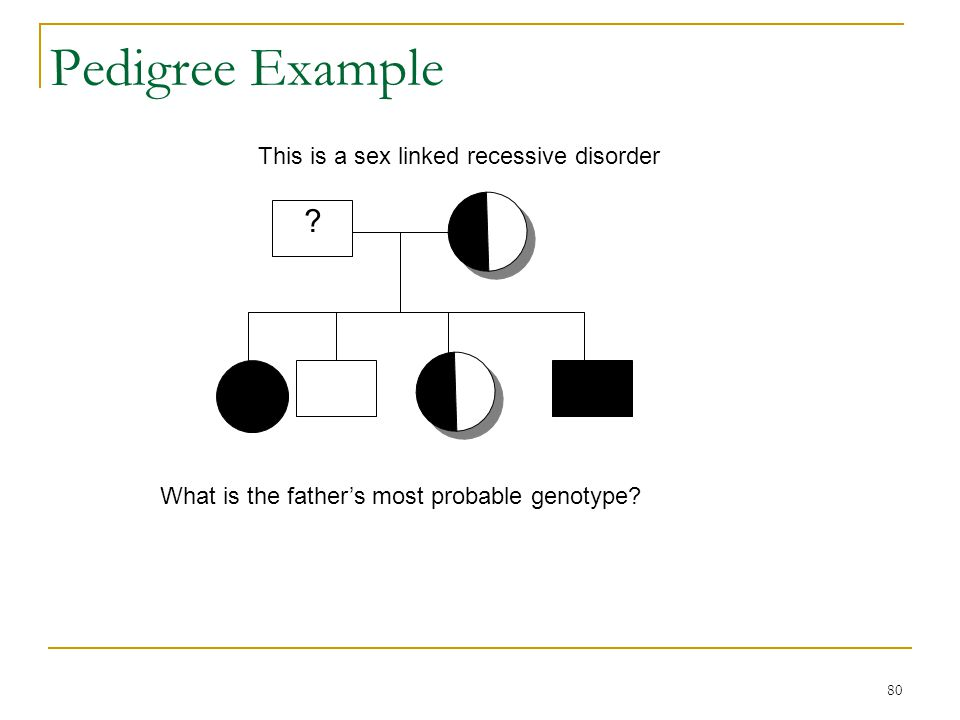80 Pedigree Example This is a sex linked recessive disorder What is the father's most probable genotype? ?