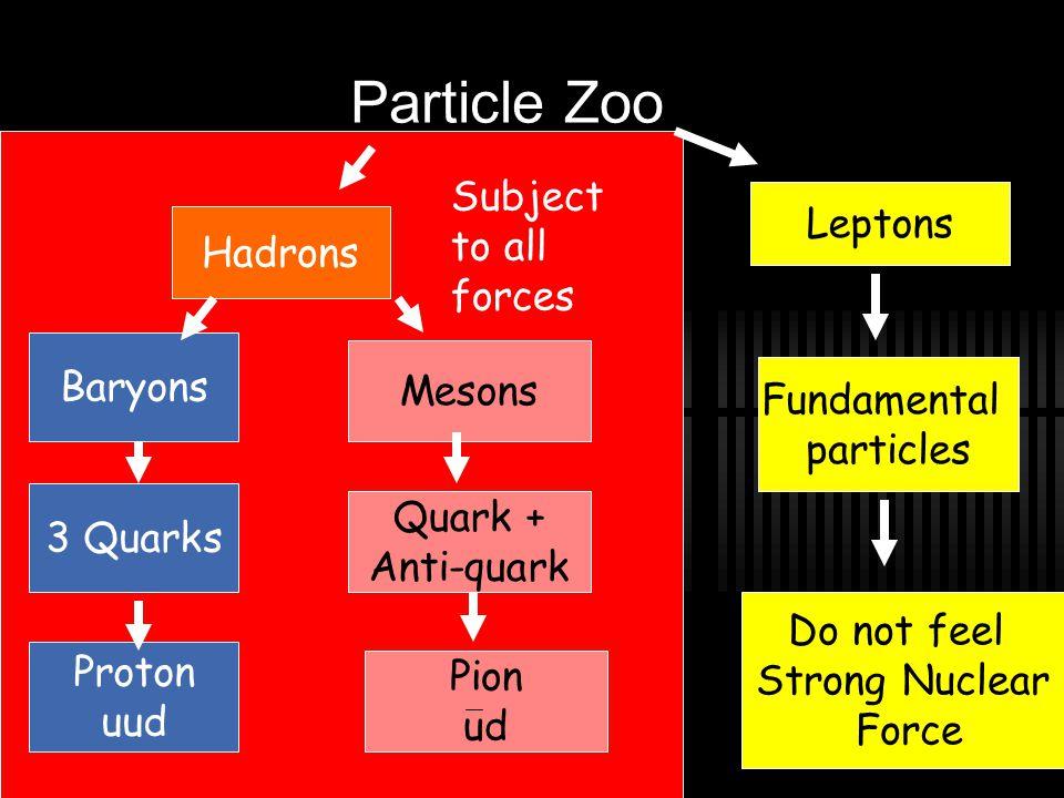 Hadrons on internet