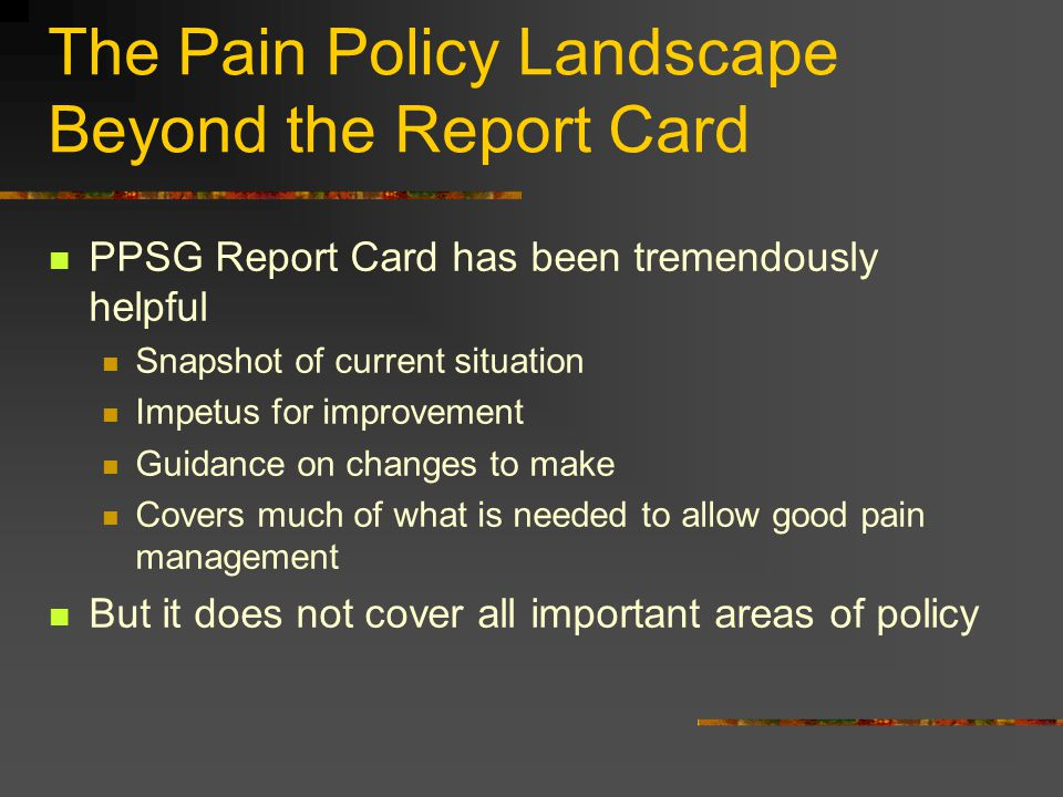 The Pain Policy Landscape Beyond the Report Card PPSG Report Card has been tremendously helpful Snapshot of current situation Impetus for improvement