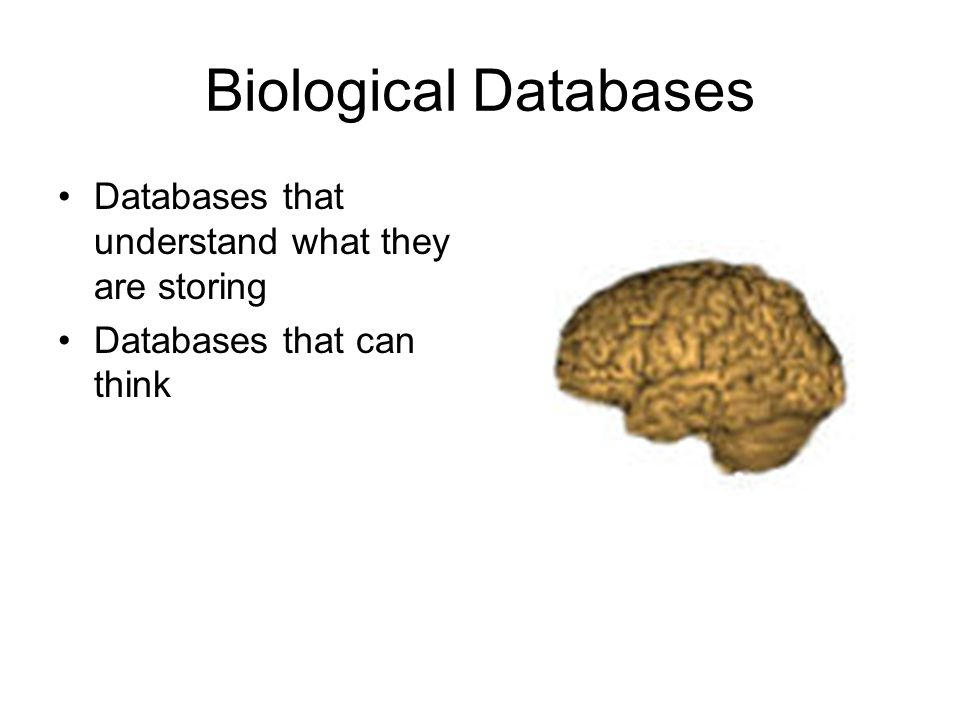 Biological Databases Databases that understand what they are storing Databases that can think