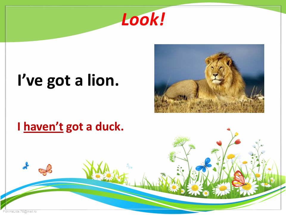 FokinaLida.75@mail.ru Look! I've got a lion. I haven't got a duck.