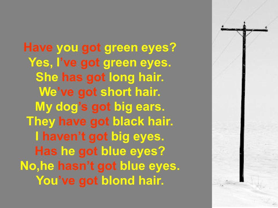 Have you got green eyes? Yes, I've got green eyes. She has got long hair. We've got short hair. My dog's got big ears. They have got black hair. I hav