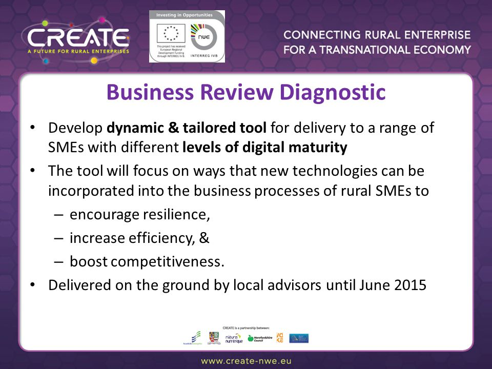 Business Review Diagnostic Develop dynamic & tailored tool for delivery to a range of SMEs with different levels of digital maturity The tool will focus on ways that new technologies can be incorporated into the business processes of rural SMEs to – encourage resilience, – increase efficiency, & – boost competitiveness.