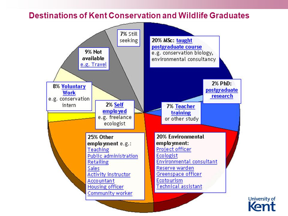 Destinations of Kent Conservation and Wildlife Graduates