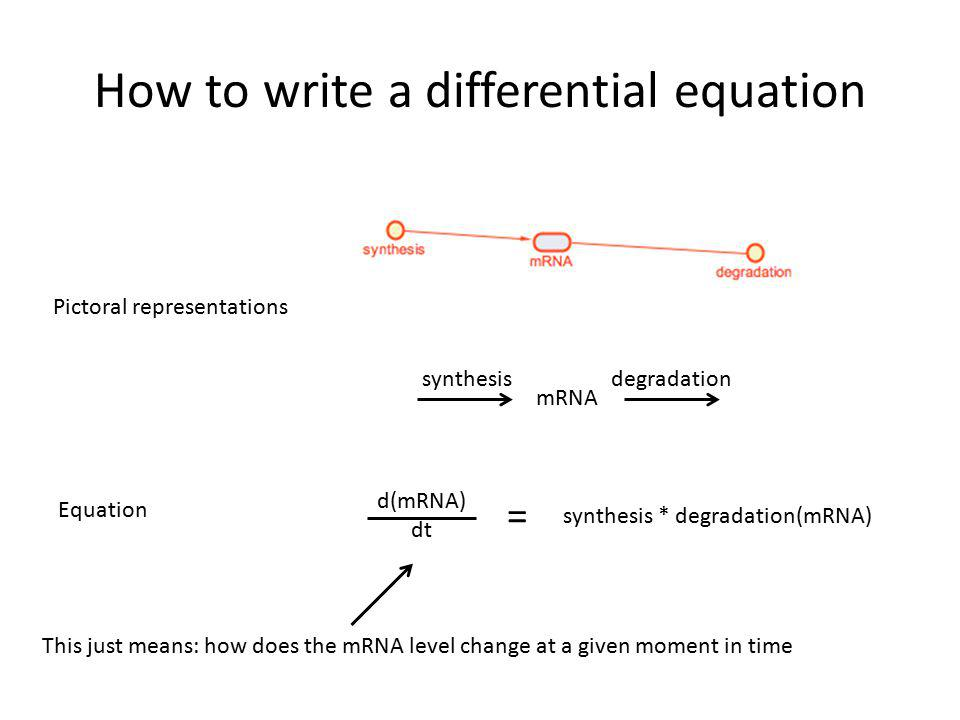 How to write a differential equation mRNA synthesisdegradation Pictoral representations Equation d(mRNA) dt = synthesis * degradation(mRNA) This just means: how does the mRNA level change at a given moment in time