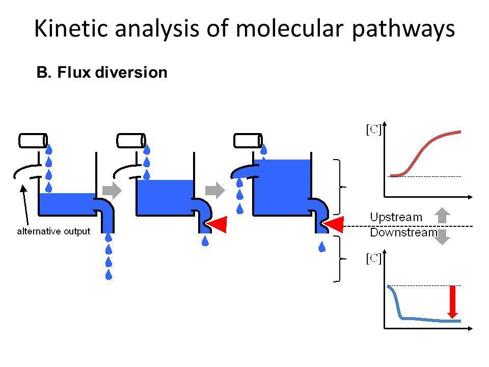 Kinetic analysis of molecular pathways B. Flux diversion