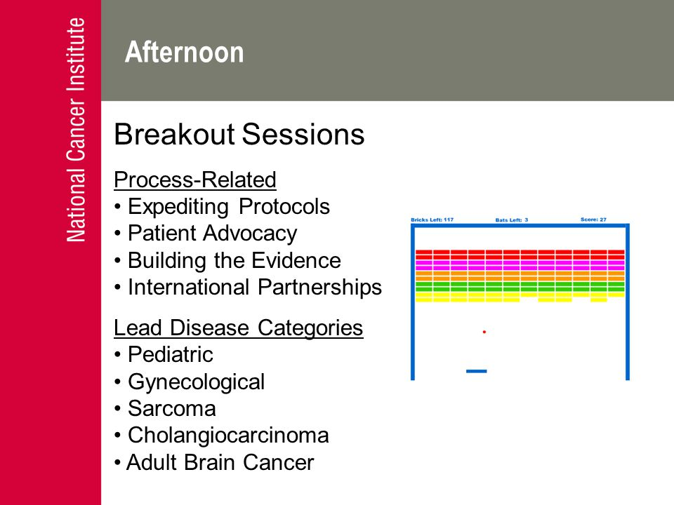 Afternoon Breakout Sessions Process-Related Expediting Protocols Patient Advocacy Building the Evidence International Partnerships Lead Disease Categories Pediatric Gynecological Sarcoma Cholangiocarcinoma Adult Brain Cancer