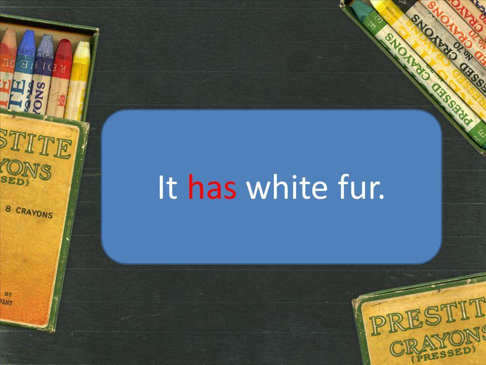 It has white fur.
