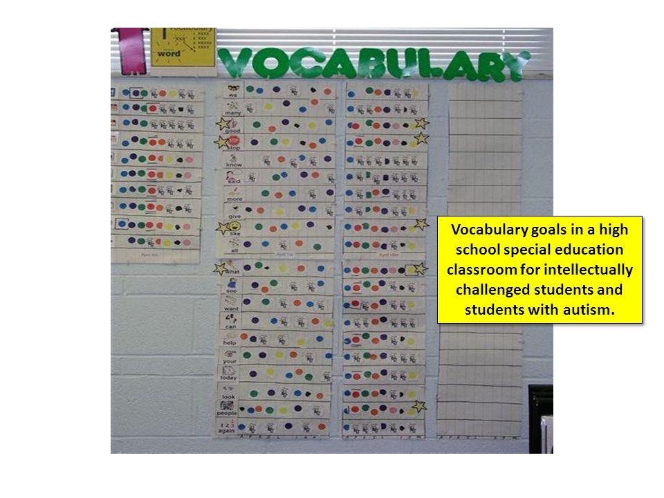 Vocabulary goals in a high school special education classroom for intellectually challenged students and students with autism.