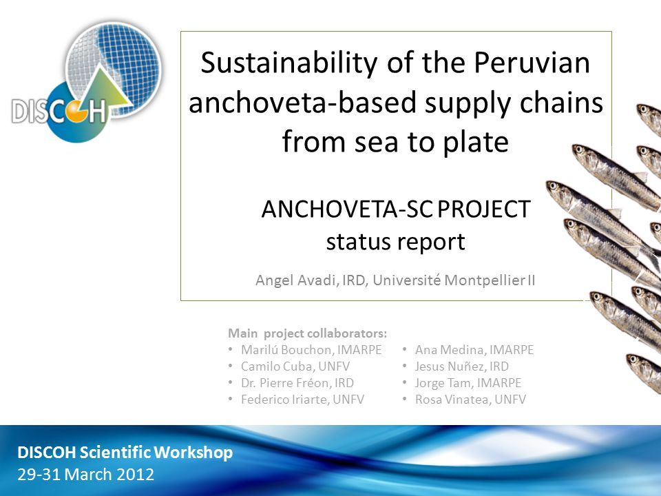 1 Sustainability of the Peruvian anchoveta-based supply chains from sea to plate ANCHOVETA-SC PROJECT status report Angel Avadi, IRD, Université Montpellier II DISCOH Scientific Workshop 29-31 March 2012 Main project collaborators: Marilú Bouchon, IMARPE Camilo Cuba, UNFV Dr.