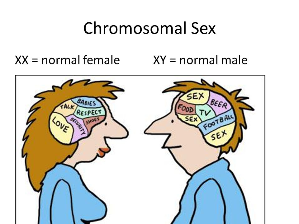 Chromosomal Sex XX = normal female XY = normal male