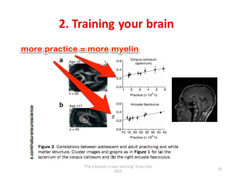 2. Training your brain