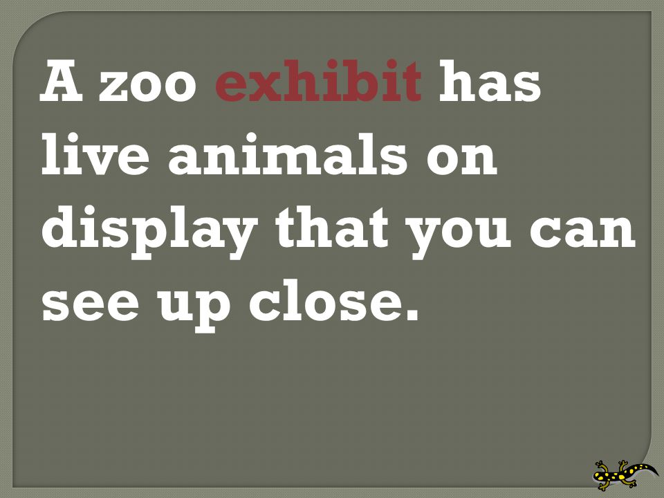 A zoo exhibit has live animals on display that you can see up close.