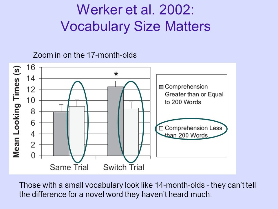 Zoom in on the 17-month-olds Werker et al. 2002: Vocabulary Size Matters