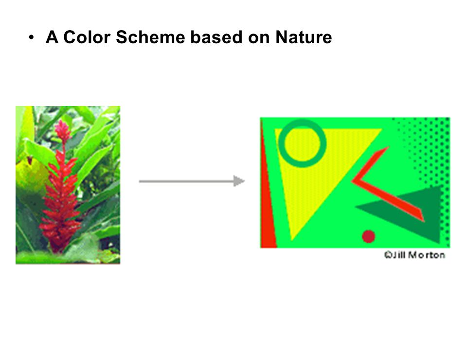 A Color Scheme based on Nature