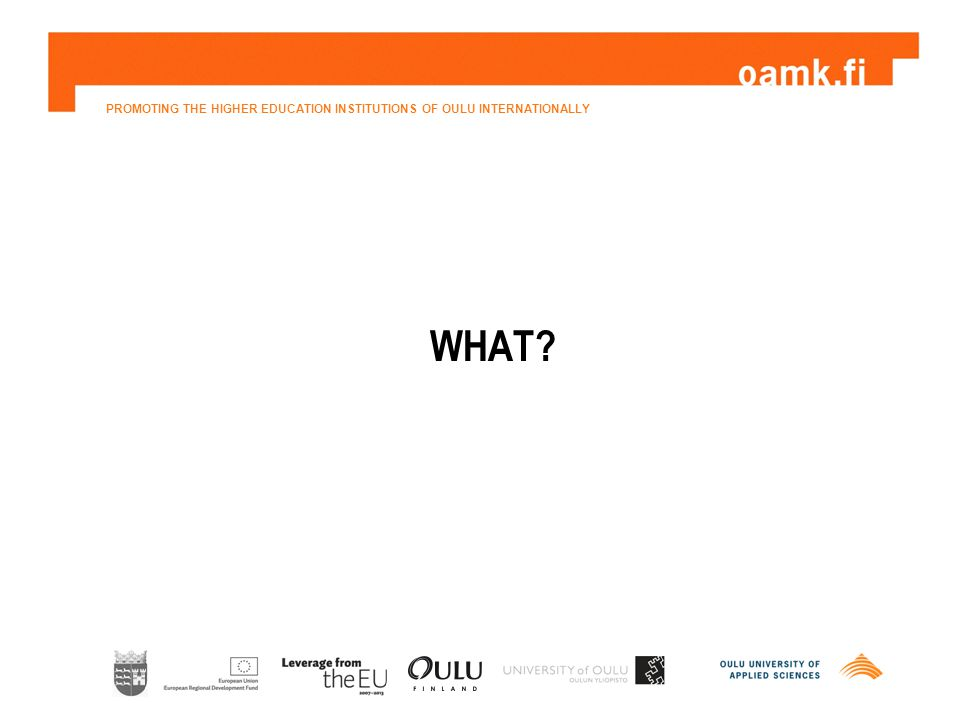 PROMOTING THE HIGHER EDUCATION INSTITUTIONS OF OULU INTERNATIONALLY WHAT?