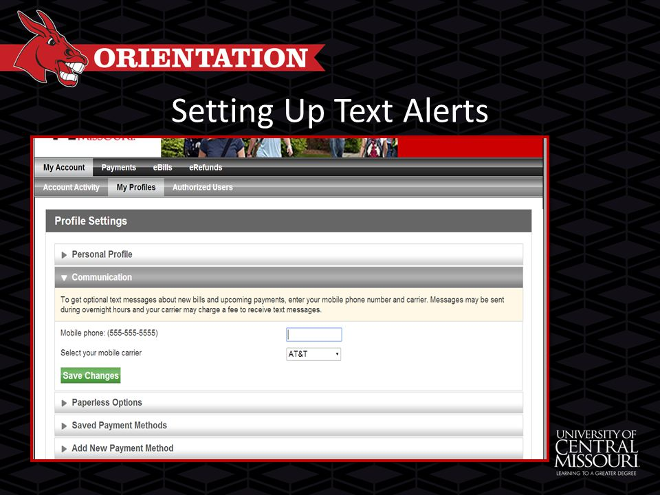 Setting Up Text Alerts
