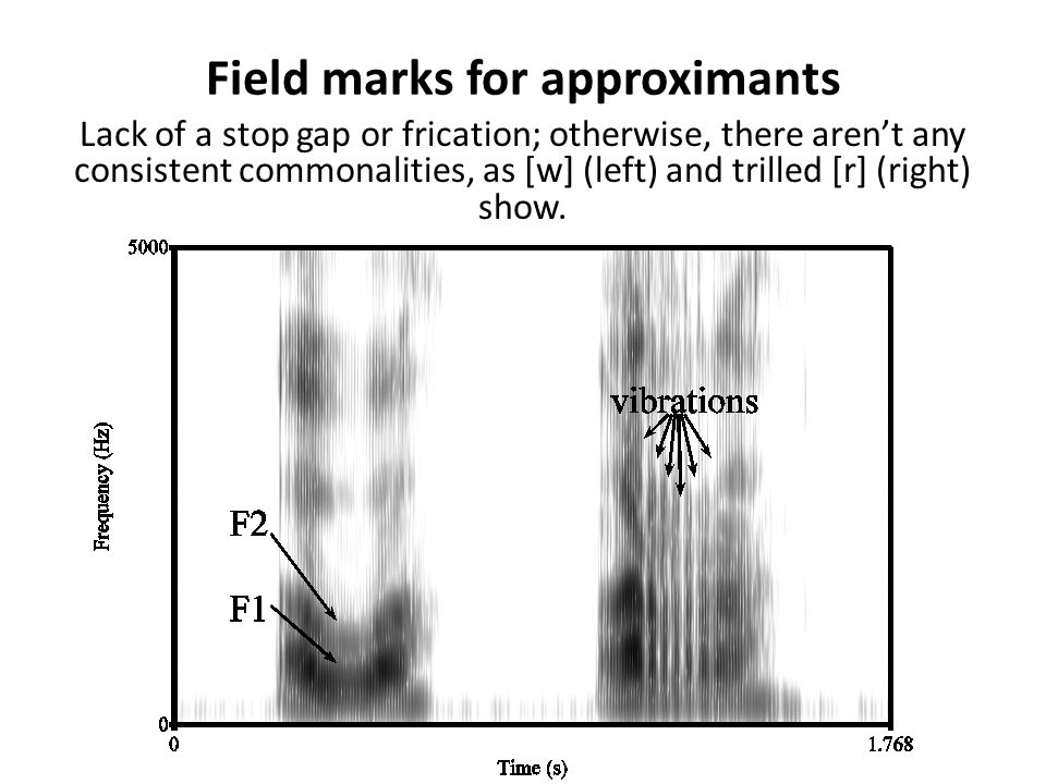 Field marks for affricates Affricates show a stop gap followed by frication, with a burst in between. Shown: [pf] (left), [bv] (right).
