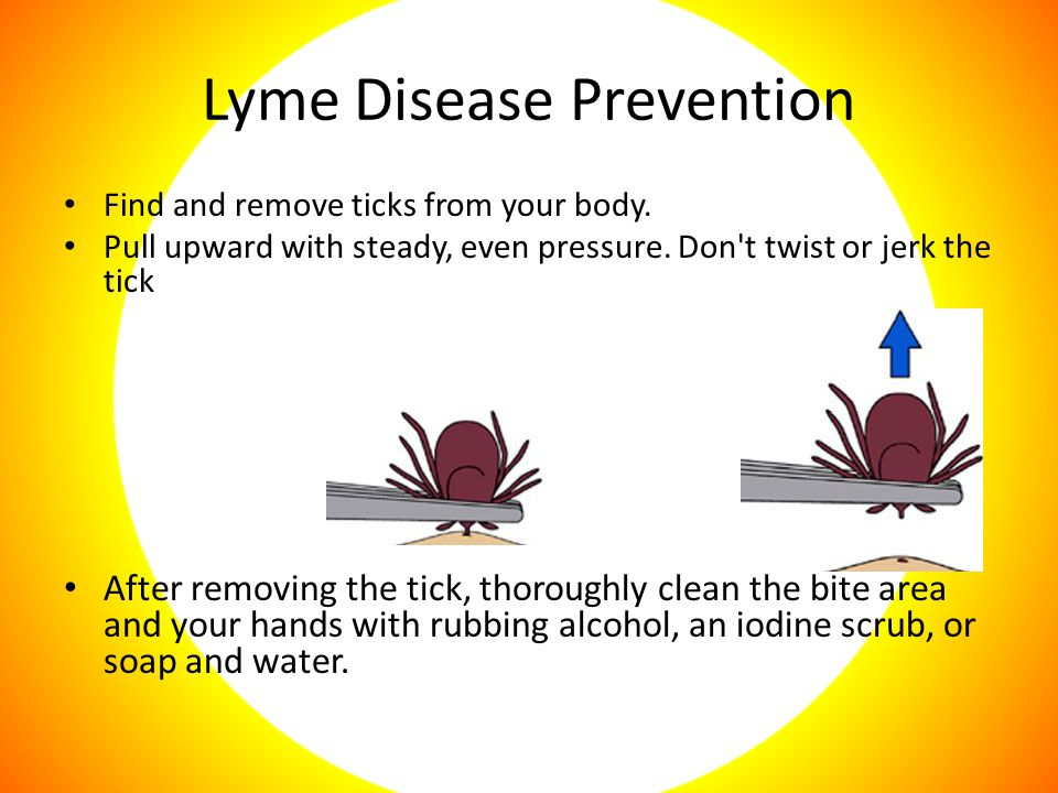 Lyme Disease Prevention Find and remove ticks from your body.